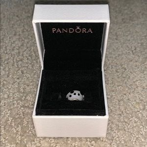 Pandora Black and White Charm